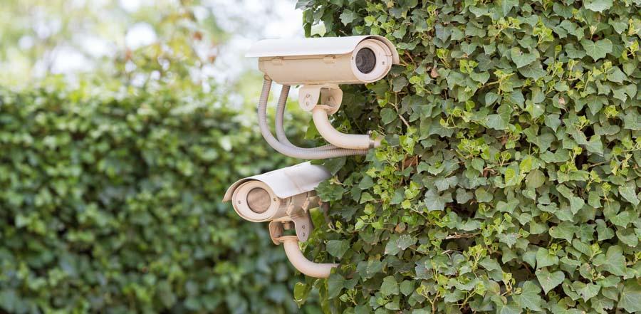 Telecamere perimetrali di videosorveglianza